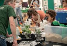 Family-friendly plant science activities
