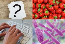 Genomics and Microbes