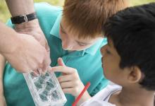 Children looking at mosquito samples